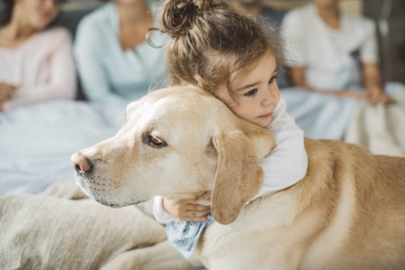 Things to Keep in Mind When Adopting a Pet for Your Child